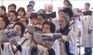 새 가족 찾기 운동 선교가 21 선교하리라